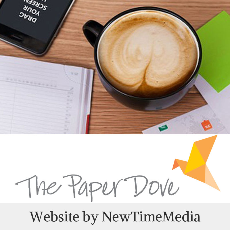 Website Design of Paper Dove by New Time Media